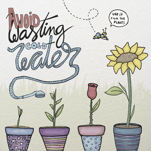 Avoid wasting cold water, use it for plants
